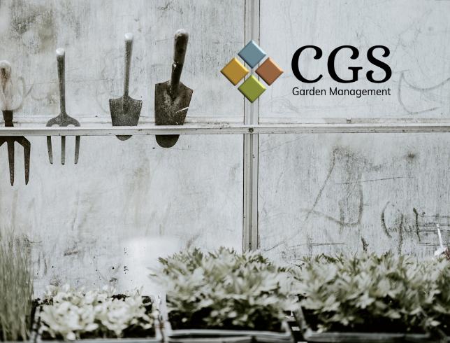 CGS image