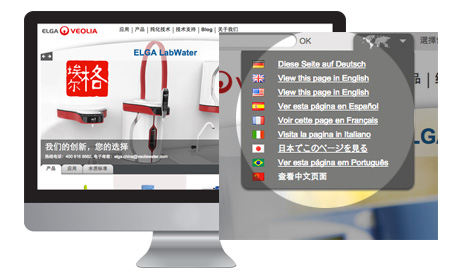 multilingual options on a screen